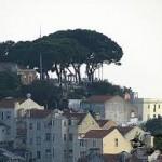Miradoura da Nossa Senhora do Monte, Lisbon