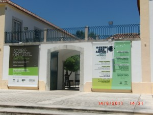 Lisbon's Centre for Contemporary Art